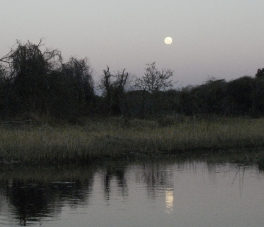 Moonrise over the Okavango Delta