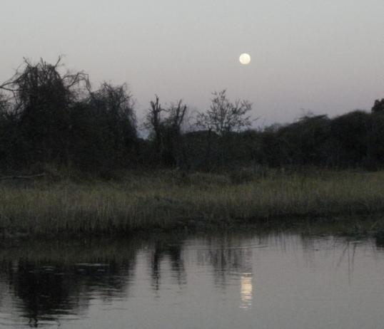 Moonrise over the Okavango Delta