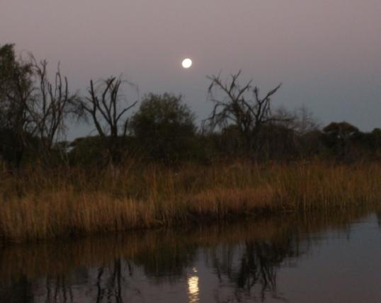 Moonrise in the Okavango Delta