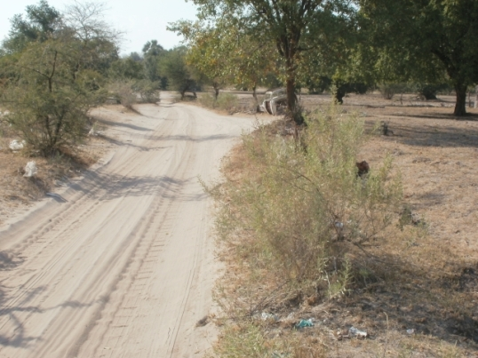 Old road from Odibo to Oshikango