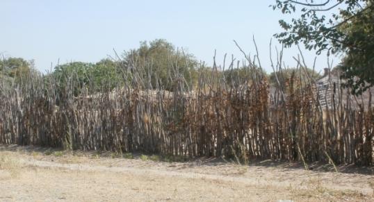 Ovambo fences