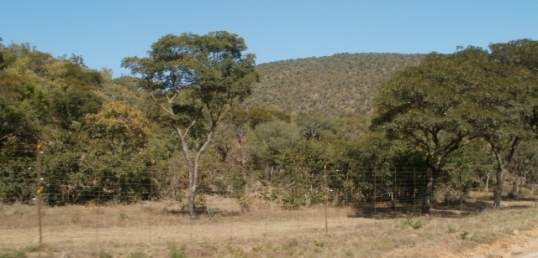 Waterberg, between Vaalwater and Modimolle