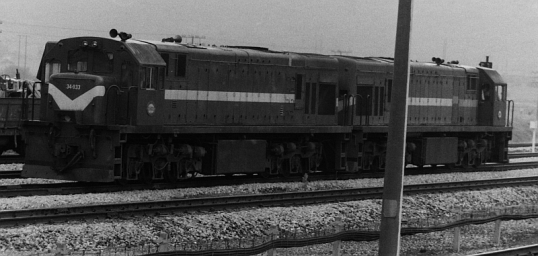 Diesel locomotives of the type that hauled the train from Bloemfontein to Port Elizabeth - at Alicedale Station