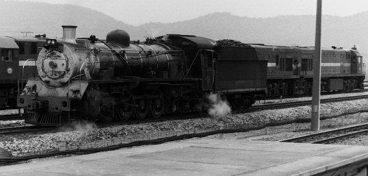 Class 19 4-8-2 locomotive that took the train over the hills from Alicedale to Grahamstown