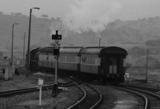 The Grahamstown coaches are taken off the Port Elizabeth train at Alicedale, and hooked to the back of a goods train