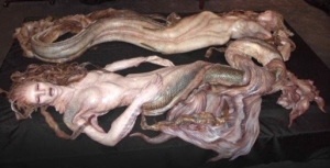 Mermaids allegedly found in President |uma's swimming pool