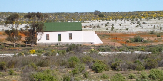 Walleskraal, Namaqualand, 20 August 2015